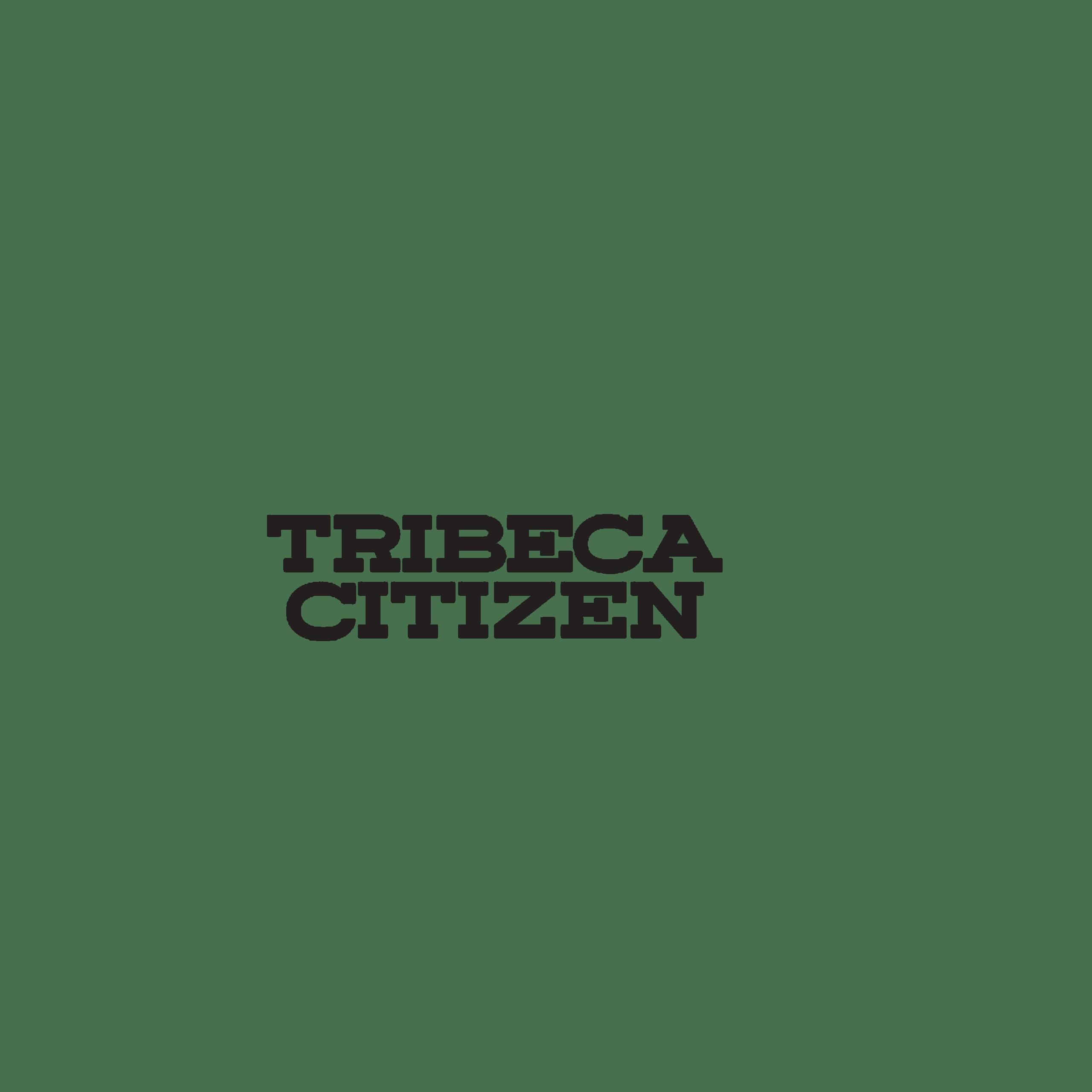 Mike Lubin Brown Harris Stevens Press Mention Tribeca Citizen